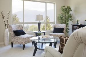 Interior-Livingroom_View